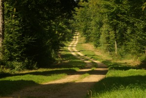 Chemin d'Emmaüs